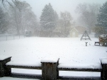 snow-day-11-2